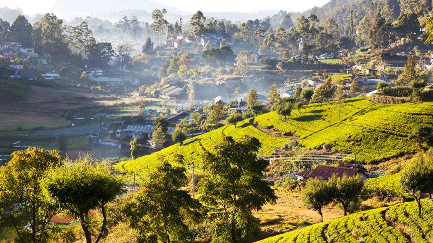 Sri Lanka in voller Schönheit | Reisebüro Rosenheim/Raubling
