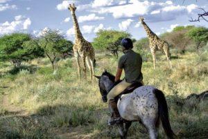 Reite in deinem Urlaub durch die Steppe und entdecke Giraffen und andere wilde Tiere, Reisebüro Rosenheim Wagner Reisen