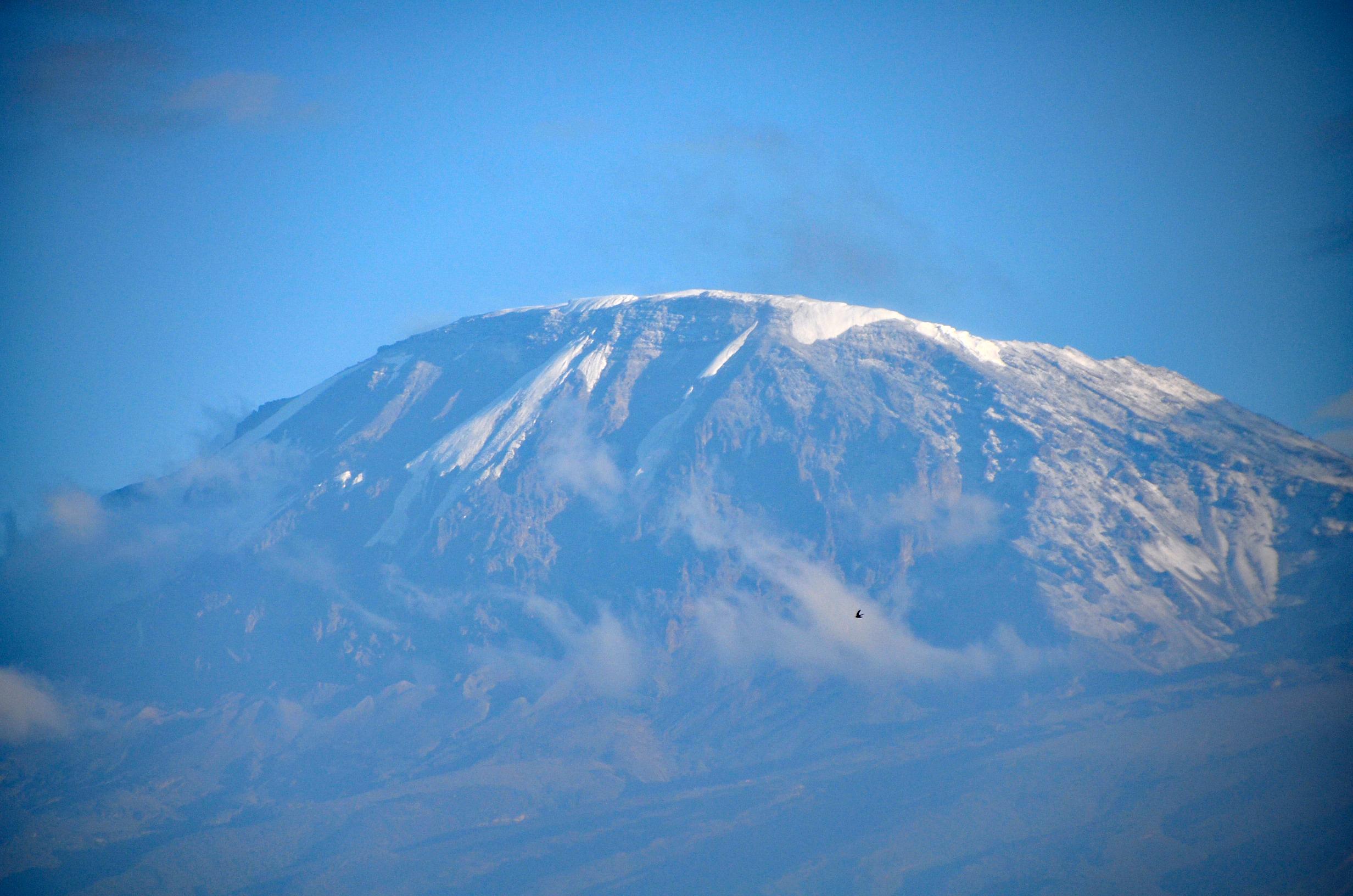 Kilimanjaro Afrika
