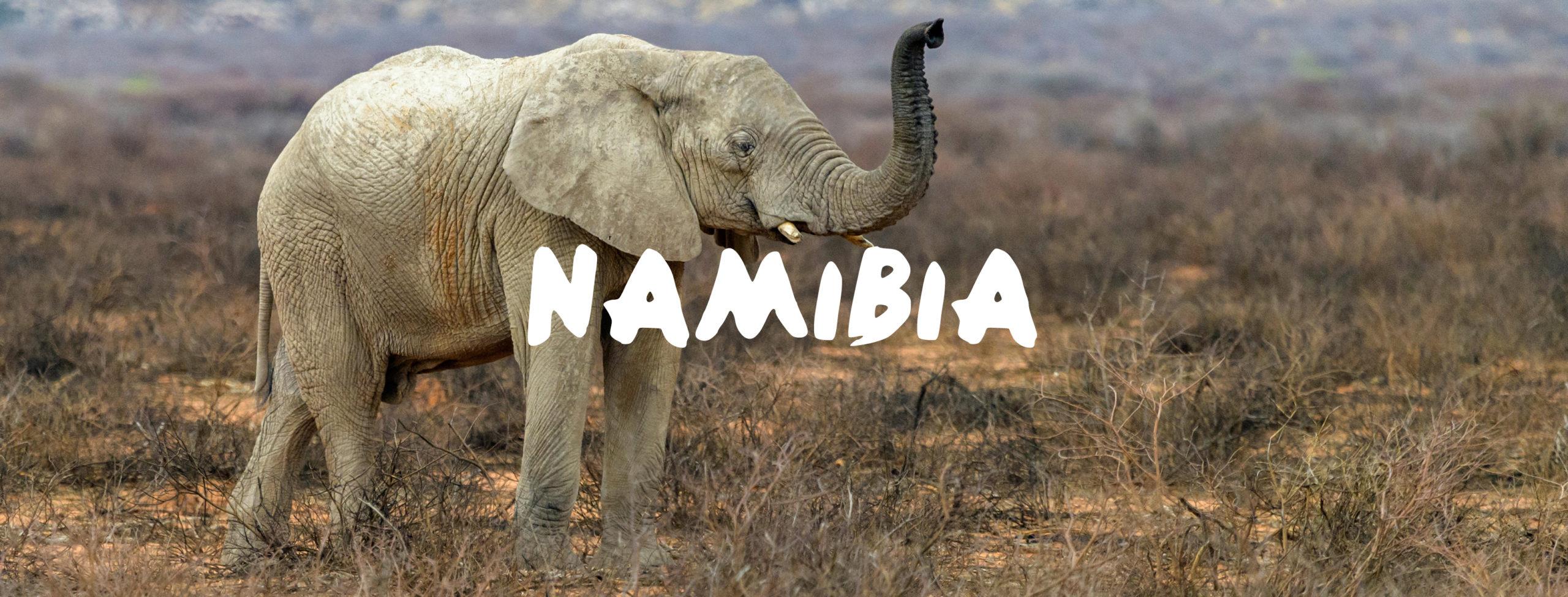 Namibia Urlaub buchen im Reisebüro Rosenheim Wagner Reisen Raubling